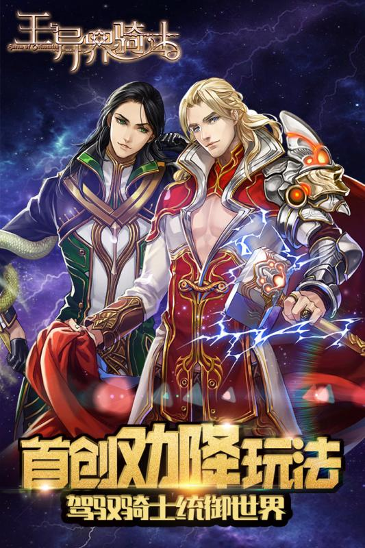 王与异界骑士